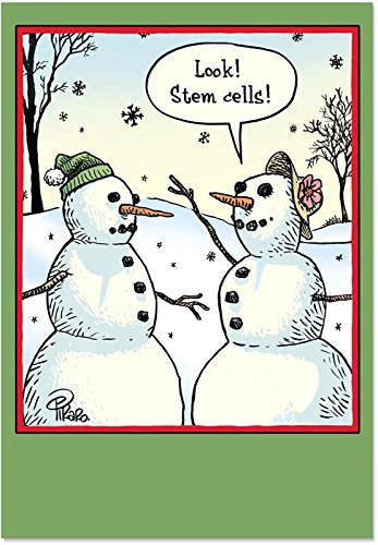 B1986 Box Set of 12 Box of Stem Cells Christmas Hilarious Christmas Greeting Card; with Envelopes