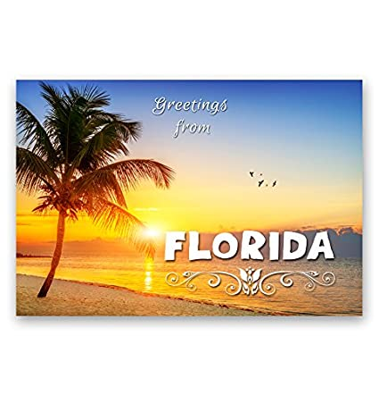 Amazon greetings from florida postcard set of 20 identical greetings from florida postcard set of 20 identical postcards fl post cards made in m4hsunfo