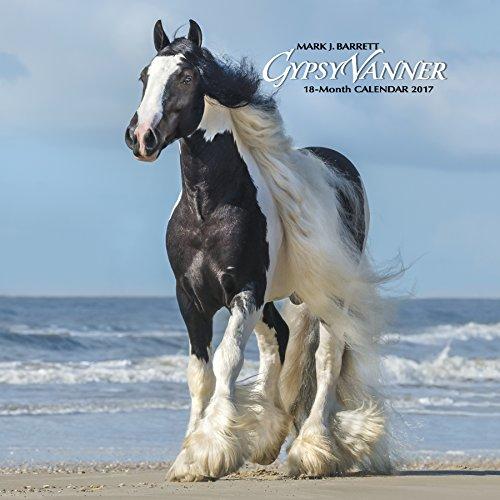 Gypsy Vanner Horse 2017 Wall Calendar Import It All