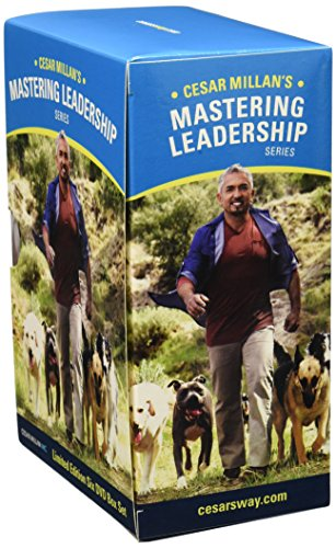 Cesar Millan People Training For Dogs Dvd The Association of Professional Dog Trainers is thrilled to celebrate National Train Your Dog Month with an exciting line up of events, amazing training. Cesar Millan People Training For Dogs Dvd Thetrainerforyourdog.