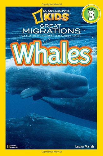 Book a Whale Watching Tour or Ask a Question