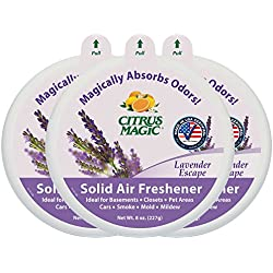 Citrus Magic Odor Absorbing Solid Air Freshener, Lavender Escape, 8-Ounce (Pack of 3)