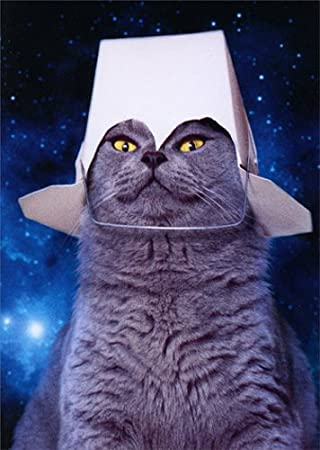 Take Out Space Cat Pop Up , Avanti Stand Out Funny Birthday Card