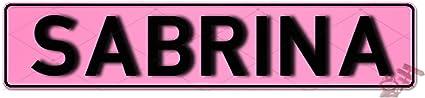 Geprägtes Nummernschild Zum Selbstgestalten Witterungsbeständig Vielfarbig Ideale Geschenkidee Individuelles Namensschild Aluminium Schild Autoschild Mit Namen Spruch Selbst Gestalten Aluschild Kfz Kennzeichen Schilder Mit Wunschtext