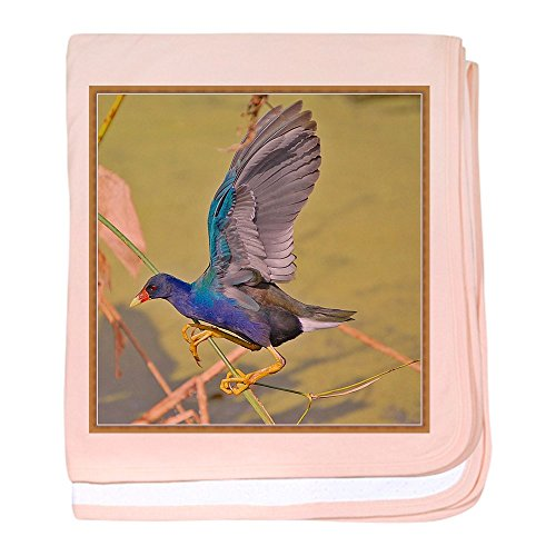 CafePress - Awesome Picture Of A Purple Gallinule - Baby Blanket, Super Soft Newborn - Delray Beach Stores