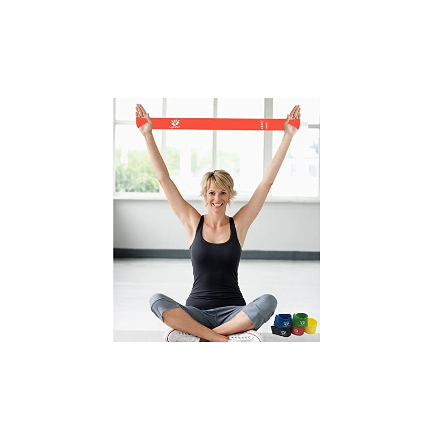 LighDen Exercise Resistance Bands Workout for Stretching and Home Fitness Set of 5 with Handy Carry Bag
