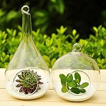 Mkono 2 Pack Hanging Airplant Holder Terrarium Glass Planter Flower Plant Pot -- Orb and Teardrop