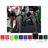 No-Choke No-Pull Front-Leading Dog Harnesses, Sport Edition, Sizes From 3 to 113 Kilograms, 10 Colors