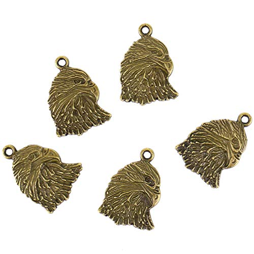 Monrocco 25 Pieces Antique Bronze Tone Jewelry Making Charms Alloy Pendants Eagle Hawk Head Charms for Necklace Bracelet Earring Jewelry Making