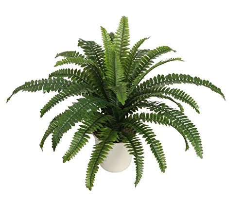 Northlight Potted Artificial Boston Fern in a Decorative ...