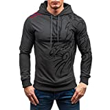 Sweatshirt For Men,Clearance Sale-Farjing Men's Autumn Winter Printed Long Sleeve Hooded Blouse Tops (3XL,Dark Gray)