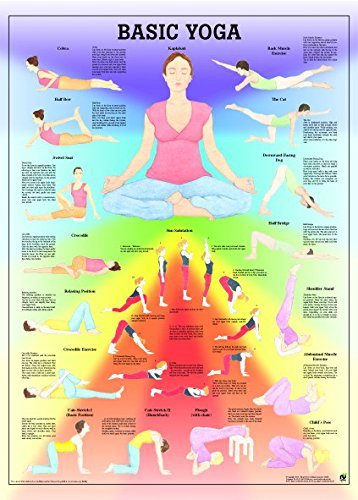 ruediger Anatomía po76e Yoga Pizarra, 50 cm x 70 cm: Amazon ...