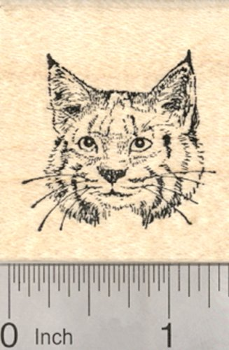 Bobcat Face Rubber Stamp, Small, North American Wildlife Cat