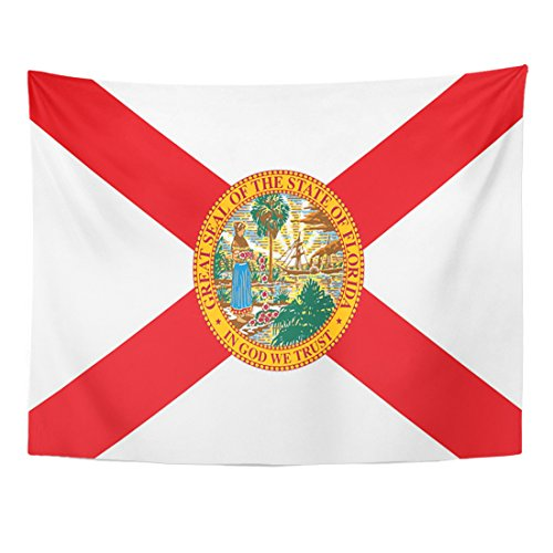 - Emvency Tapestry America Florida State Flag USA Celebration Home Decor Wall Hanging for Living Room Bedroom Dorm 60x80 Inches