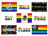 Wholesale Lot of 5 Mexico Mexican Male Gay Pride Double Mars Coexist Brothers LGBT Rainbow 3'x5′ Polyester Flags