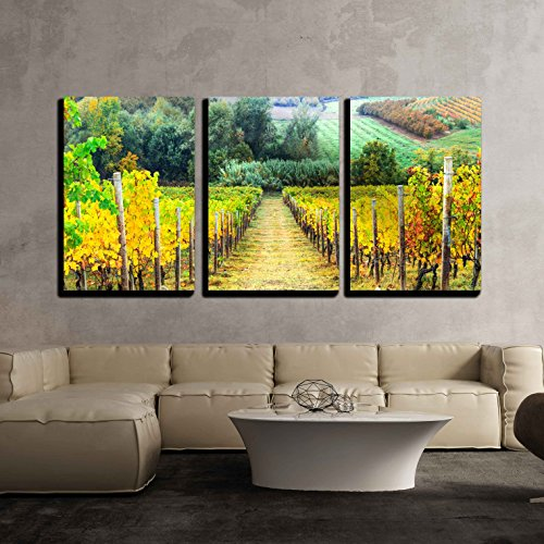 Tuscany Italy Landscape - wall26 - 3 Piece Canvas Wall Art - Beautiful Autumn Landscape with Vineyards. Tuscany, Italy - Modern Home Decor Stretched and Framed Ready to Hang - 24