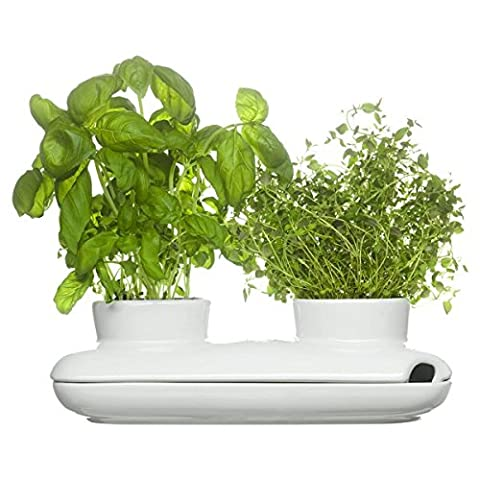 Sagaform Duo of Herb Pots - White