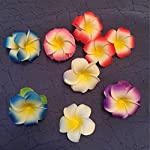 ShineBear-20pcs-56789cm-Plumeria-Hawaiian-Foam-Frangipani-Flower-Artificial-Silk-Egg-Flower-for-Wedding-Party-Decoration-Color-Pink-Size-7cm