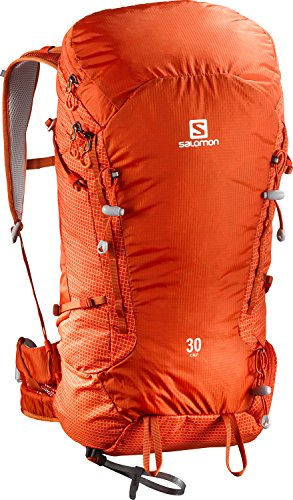 Salomon X Alp