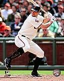"Brandon Belt San Francisco Giants MLB Action Photo (Size: 8"" x 10"")"