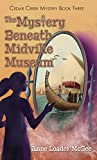 The Mystery Beneath Midville Museum: Cedar Creek Mystery Book 3