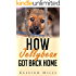 How Jellybean Got Back Home: (a cute dog story of hope, for dog lovers everywhere)