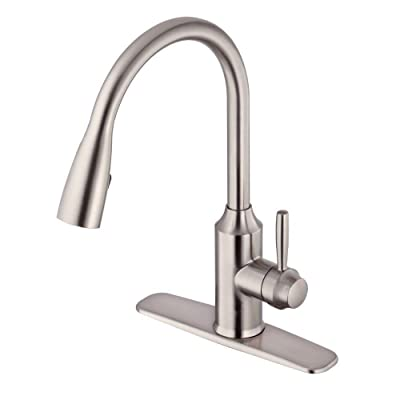 Glacier Bay FP4A4080SS Pulldown Kitchen Faucet