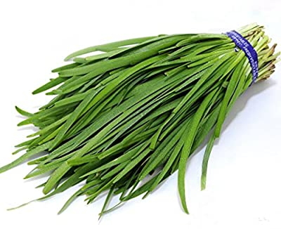 Futaba® Garlic Chives Chinese Chives Pure Natural Green Organic Vegetable 300 Seeds