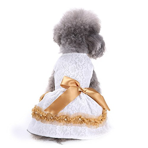 Pet Dress Puppy Dog Cute Tutu Dress Lace Princess Costume Apparel Girl Gogs Cats Clothes]()