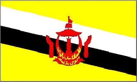Brunei bandera nacional 152,4 cm x 91,44 cm: Amazon.es: Hogar