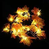Thanksgiving  Decoration Light, Fall Maple Leaf Garland String Lights,Thanksgiving...