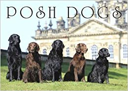 Posh Dogs (Country Life Magazine)