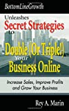 BottomLineGrowth Unleashes Secret Strategies to Double (Or Triple!) Your Business Online: Increase Sales, Improve Profits and Grow Your Business