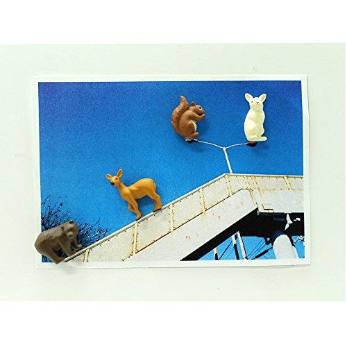 Midori Mini Magnet, Forest Animals (49758006) Photo #3