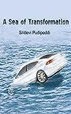 A Sea of Transformation