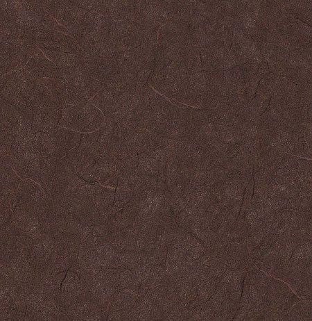 雲龍紙チョコレート25 x 37インチシート B003VKNXIW