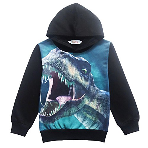 Kids' Long Sleeve Casual Dinosaur Pullover Hoodie Sweatshirts Hoodies for Boys or Girls Black