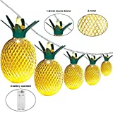 diy teen room decor Wishwill Pineapple Lights, 5ft 10 LED Pineapple Light Fairy String Lights Decor Gifts Battery Powered for Teen Girls Kids DIY Christmas Wedding Home Party Bedroom Birthday Decoration (Warm White)