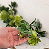 6 feet of Realistic Look Artificial Hues of Green Succulent Garland for Home Decor, Embellishing and Displaying