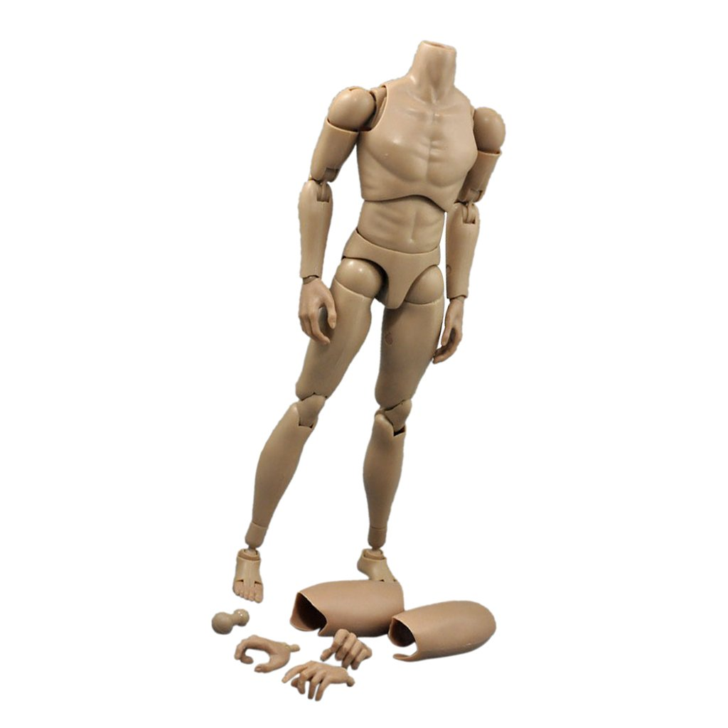 Narrow Shoulder 1:6 Scale 10.31 inch Male Action Figure Body Toys For TTM19