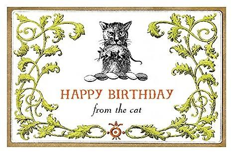 Amazon.com: Lucca trabajo tarjeta de cumpleaños de gato, 5 x ...
