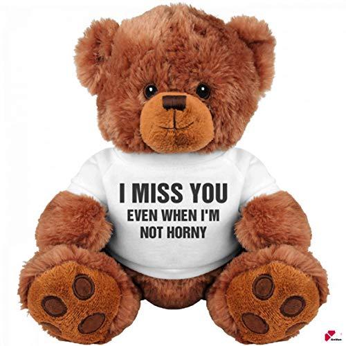 Funny Teddy Bear Couple Gift: Medium Teddy Bear Stuffed Animal : I Miss You