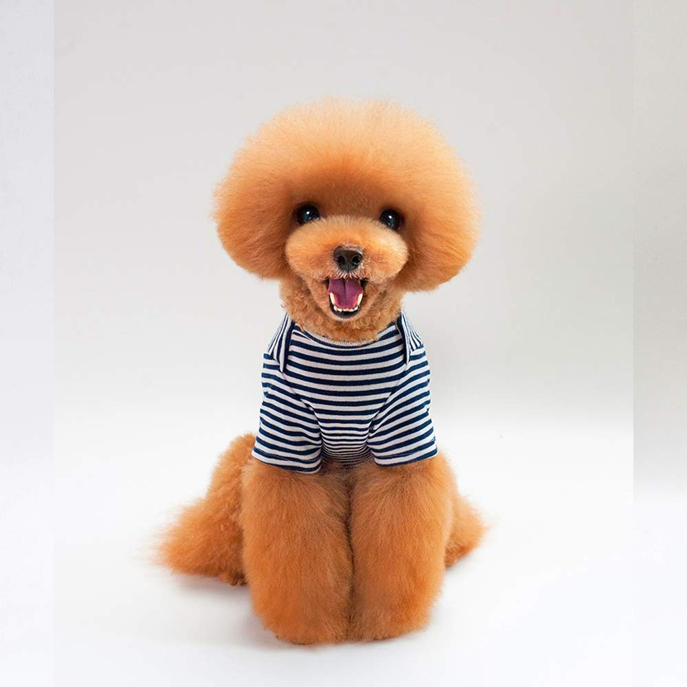 bluee XX-Large bluee XX-Large Cute Dog Spring and Summer T-Shirt, Dog Clothes Teddy Clothes VIP Than Bear Puppies Cute Breathable Two-Legged Cute Little Pet Dog Clothing,bluee,XXL