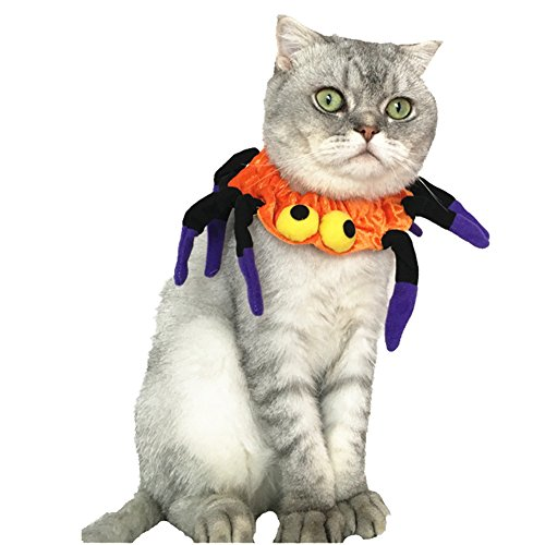 Mummumi Pet Spider Collars Halloween Scarf Accessories for Small Dog & Cat Halloween Cosplay Party Accessories Costume