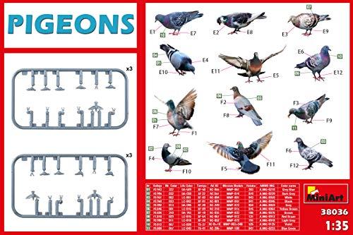 MINIART 38036 1/35 Pigeons Plastic Accessory 12 Figures of Birds 2