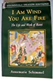 I Am Wind, You Are Fire, Annemarie Schimmel, 1570622469
