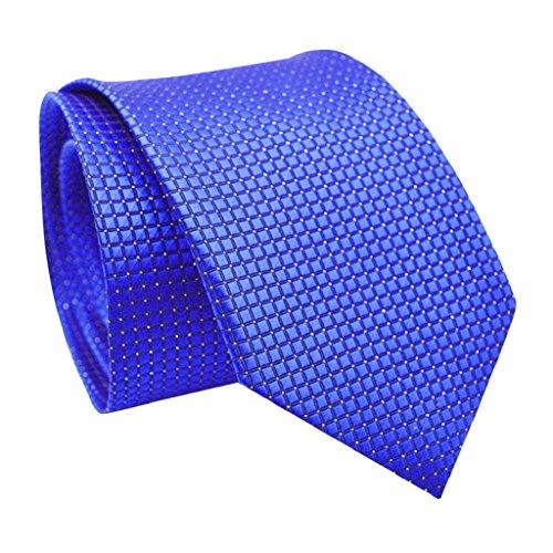 en Small Plaid Solid Color Business Wedding Tie Cravat Necktie Xmas Gift (Royal Blue) (Xmas Necktie)