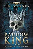 Barrow King: The Realms Book One: (An Epic Fantasy LitRPG Series)
