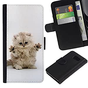 Samsung Galaxy S6 - Dibujo PU billetera de cuero Funda Case Caso de la piel de la bolsa protectora Para (Cute Cat Kitten Invisible Enemy)