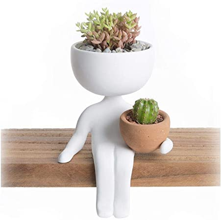 Amazon Com Decorative Planter Robert Plant Home Decor Design Trendy Pot Hand Made Robert Planters Edge White Garden Outdoor